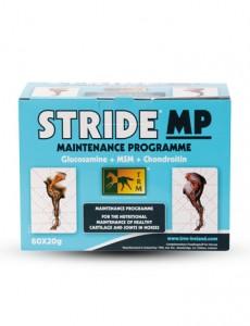 STRIDE-MP